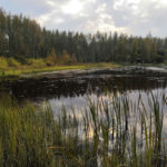 Tampere Aitolahti 837-722-2-276 ranta 1
