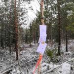 Parkano Koskenkylä kuvio 23