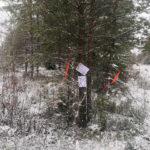 Parkano Koskenkylä opastus tilan itäpuoli