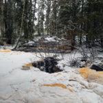 Parkano Koskenkylä Paattankoski kuohuu