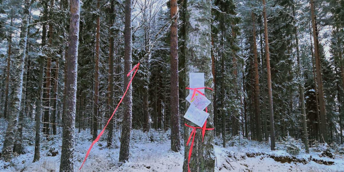 Urjala Hankala kuvio 1